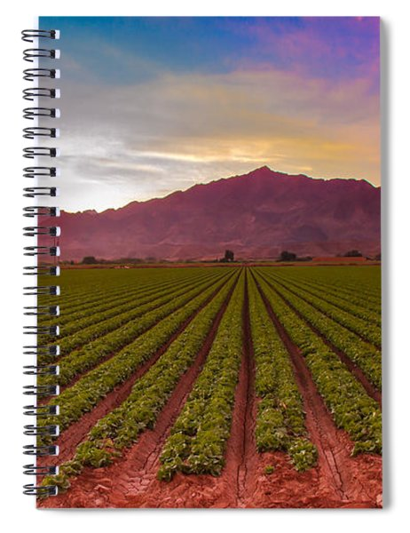 Sunrise Over Lettuce Field Spiral Notebook