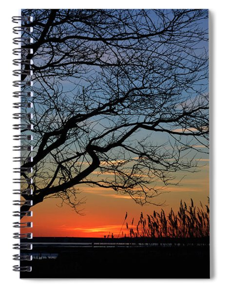 Sunset Tree In Ocean City Md Spiral Notebook