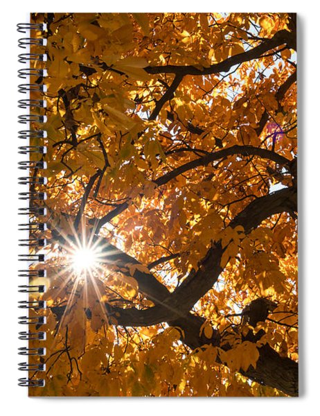 Sunshine Gold Spiral Notebook