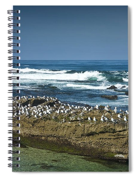 Surf Waves At La Jolla California With Gulls Perched On A Large Rock No. 0194 Spiral Notebook