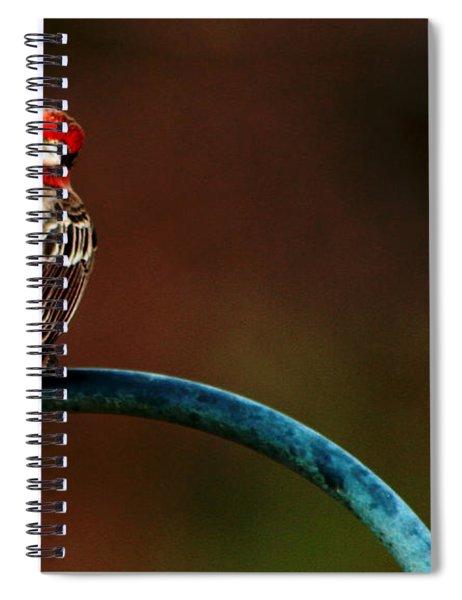 Surreal Purple Finch Spiral Notebook