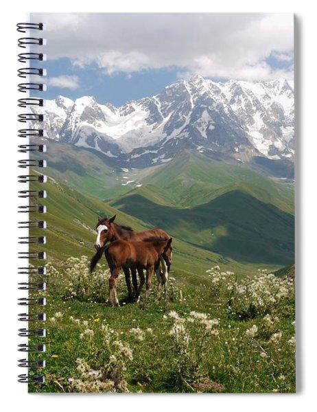 Svaneti  Spiral Notebook