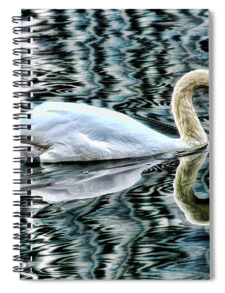 Swan On Lake Eola By Diana Sainz Spiral Notebook