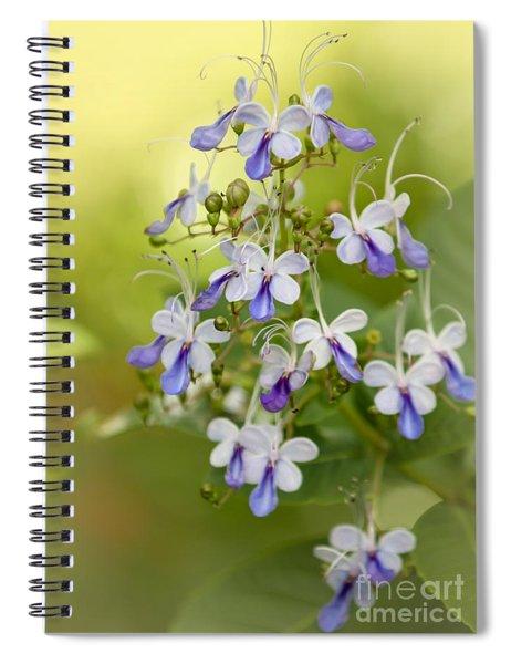 Sweet Butterfly Flowers Spiral Notebook