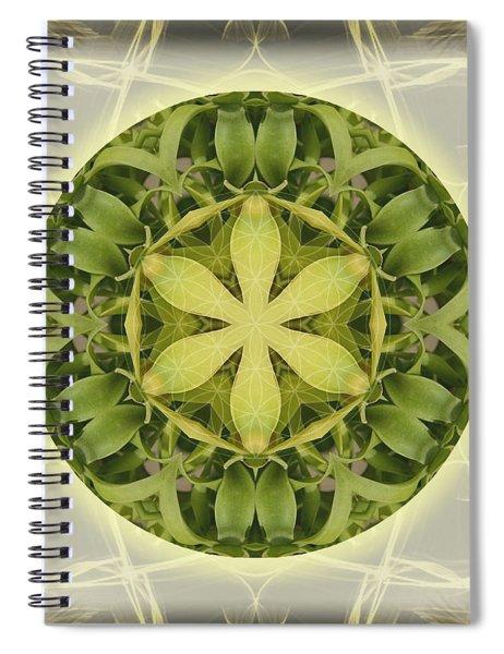 Sweet Full Moon Dreams Spiral Notebook
