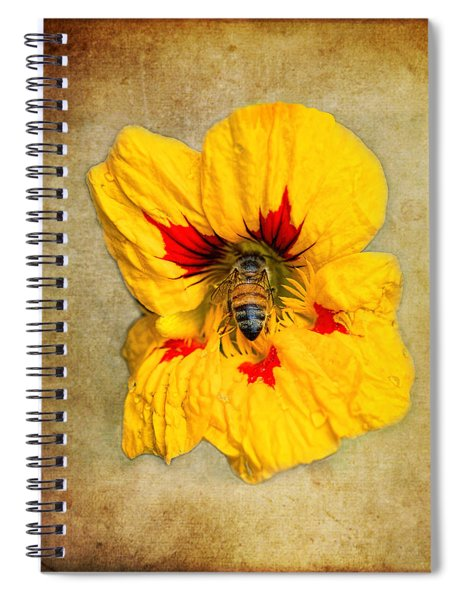 Sweet Spot Spiral Notebook
