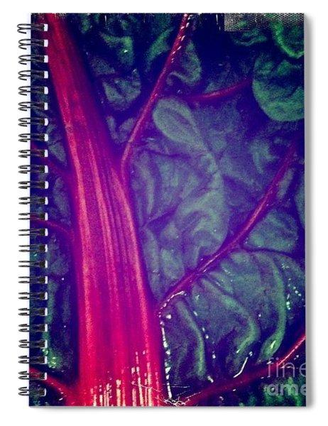 Swiss Chard Spiral Notebook
