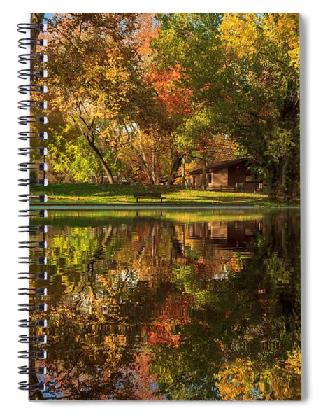 Sycamore Reflections Spiral Notebook