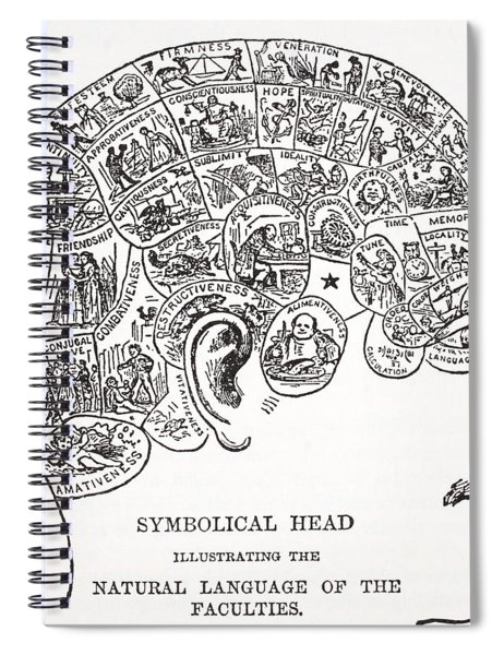 Symbolical Head Showing The Natural Spiral Notebook