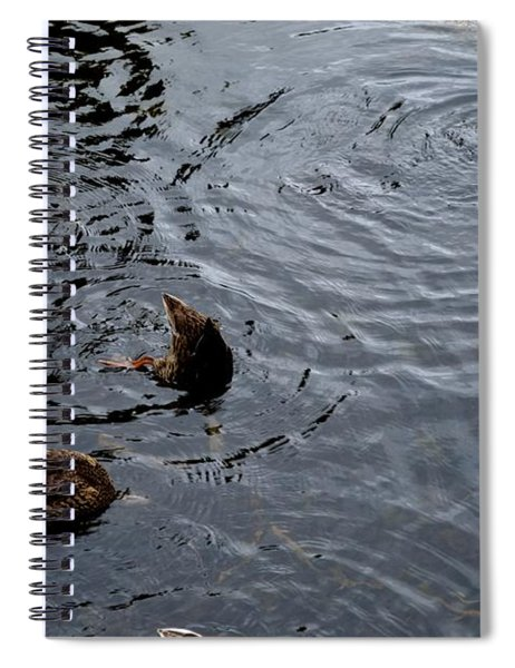 Synchronised Swimming Team Spiral Notebook