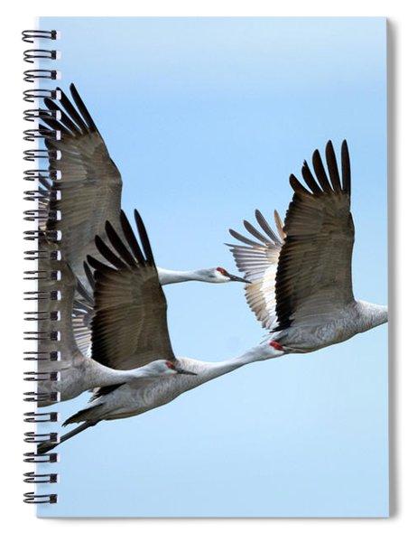 Synchronized Spiral Notebook