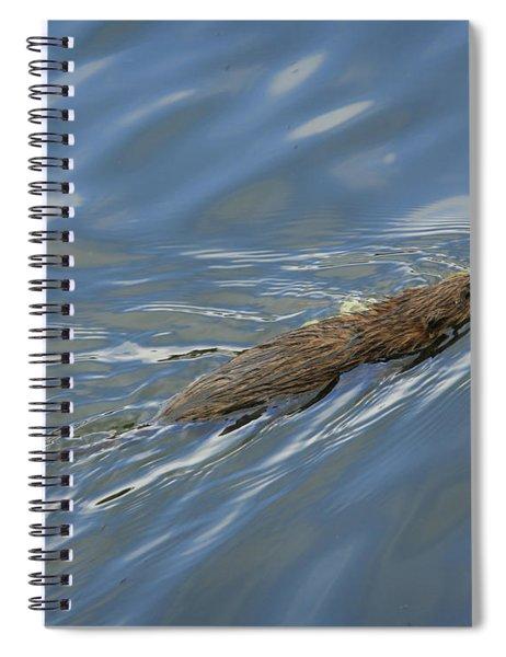 Taking Dinner Home Spiral Notebook