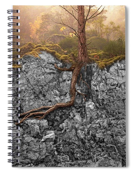 Taproot Spiral Notebook