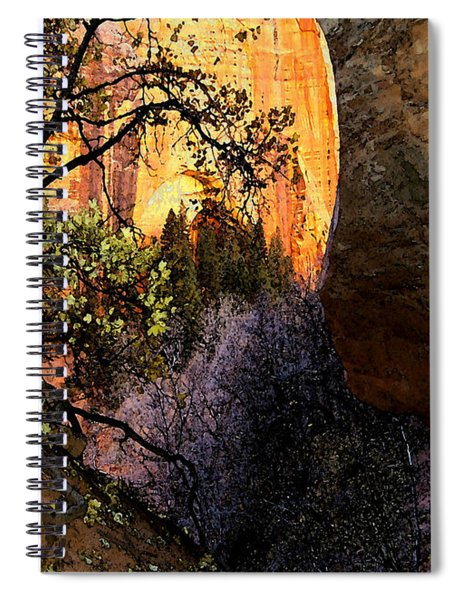 Taylor's 1 Spiral Notebook