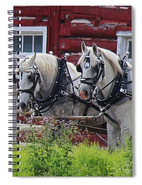 Team Of Greys Spiral Notebook
