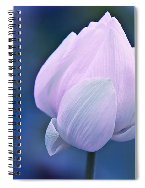 Tender Morning With Lotus Spiral Notebook