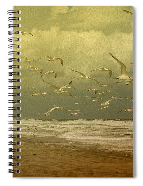 Terns In The Clouds Spiral Notebook