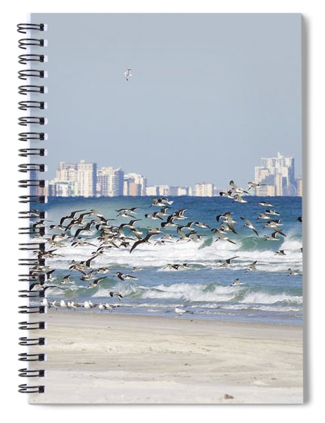 Terns On The Move Spiral Notebook