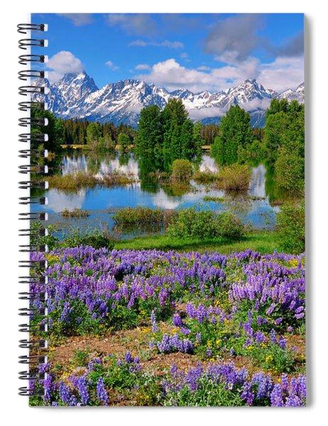 Teton Spring Lupines Spiral Notebook
