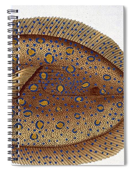 The Argus Flounder Spiral Notebook