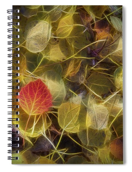 The Aspen Leaves Spiral Notebook
