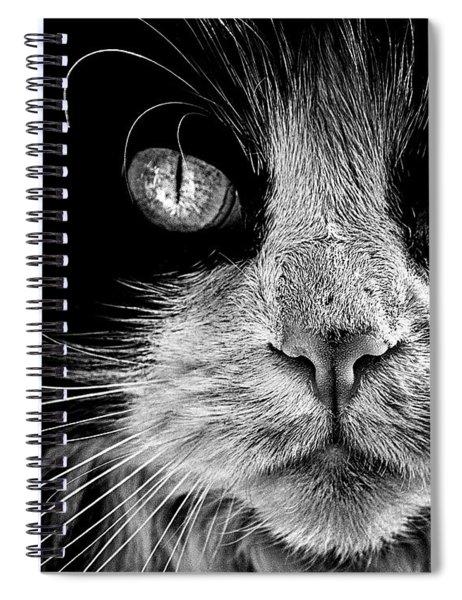 The Big Bad Boy Spiral Notebook