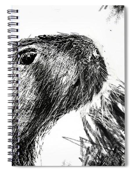 The Capybara  Spiral Notebook