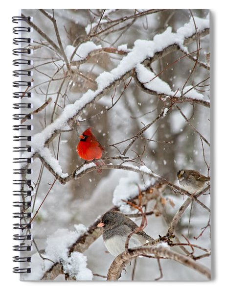 The Cardinal Rules Spiral Notebook