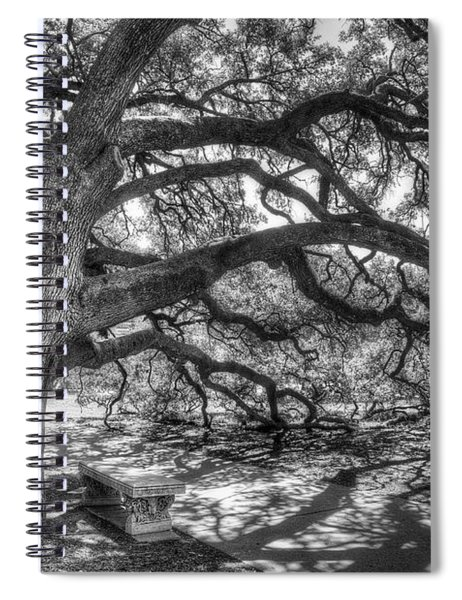 The Century Oak Spiral Notebook