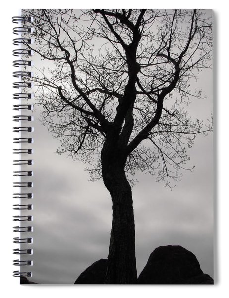 The Chill Of Spring In The Shenandoah Spiral Notebook