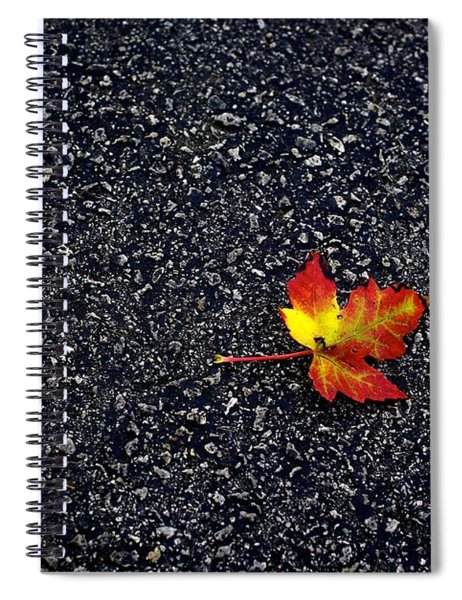 The Colors Of Autumn Spiral Notebook