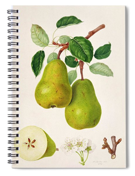 The D'auch Pear Spiral Notebook