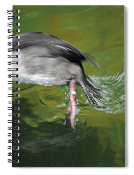 The Dive Spiral Notebook