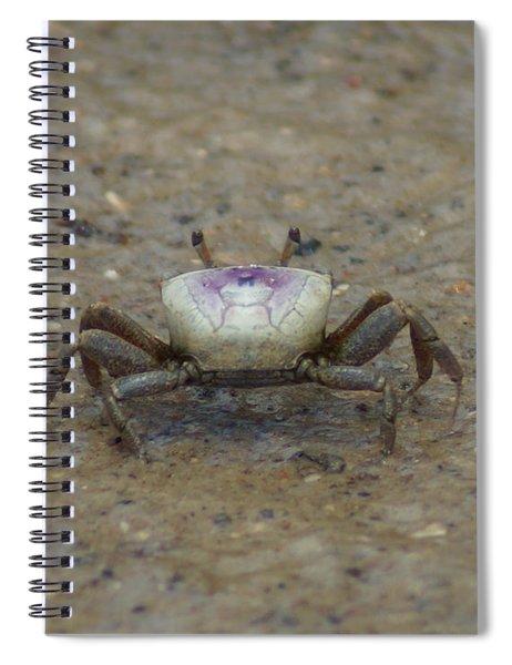 The Fiddler Crab On Hilton Head Island Spiral Notebook