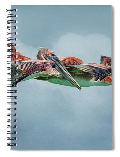 The Flying Pair Spiral Notebook