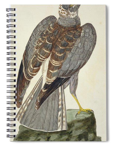 Hen Harrier Spiral Notebook