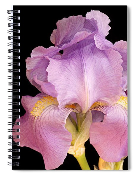 The Iris In All Her Glory Spiral Notebook
