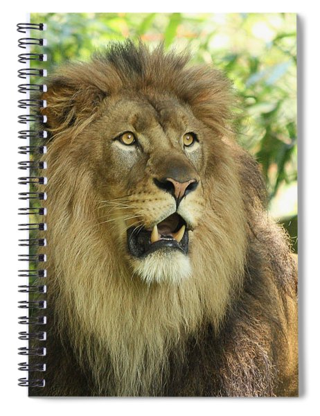 The Lion King Spiral Notebook