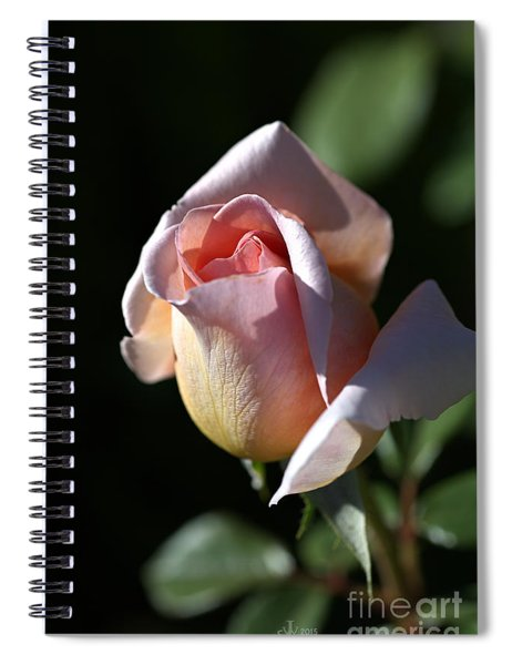 The Morning Pink Rose Spiral Notebook