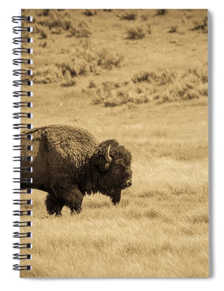 The Old Bull Spiral Notebook