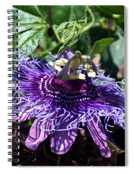 The Passion Flower Spiral Notebook