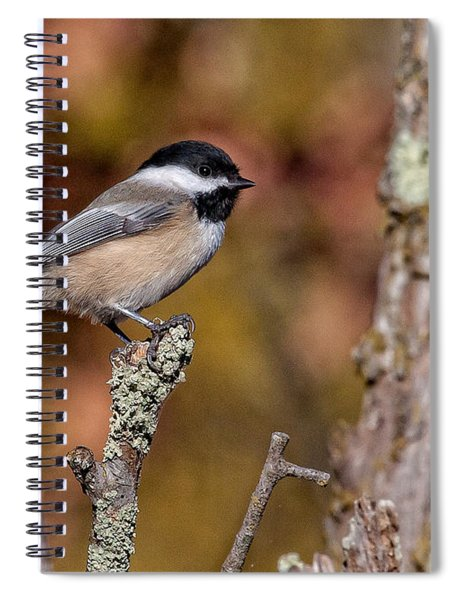 The Perch Spiral Notebook