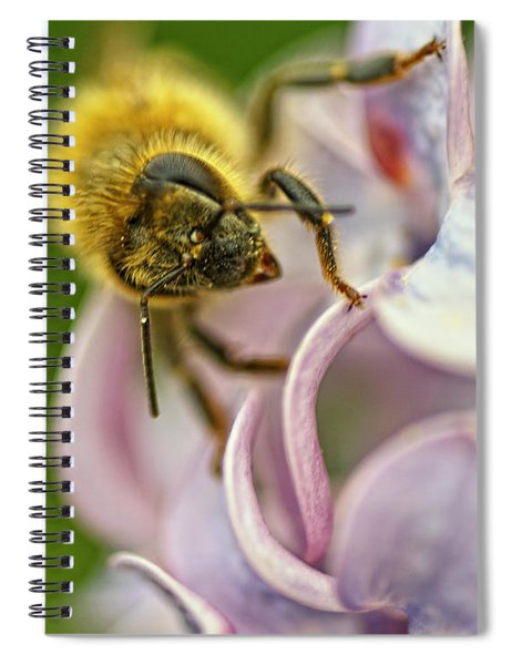 The Pollinator Spiral Notebook