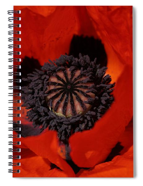 The Poppy Is Also A Flower Spiral Notebook