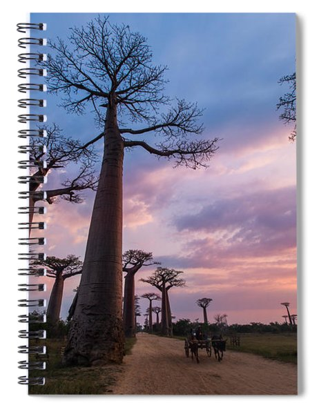 The Road To Morondava Spiral Notebook
