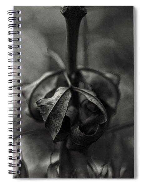 The Rolled Leaf Spiral Notebook