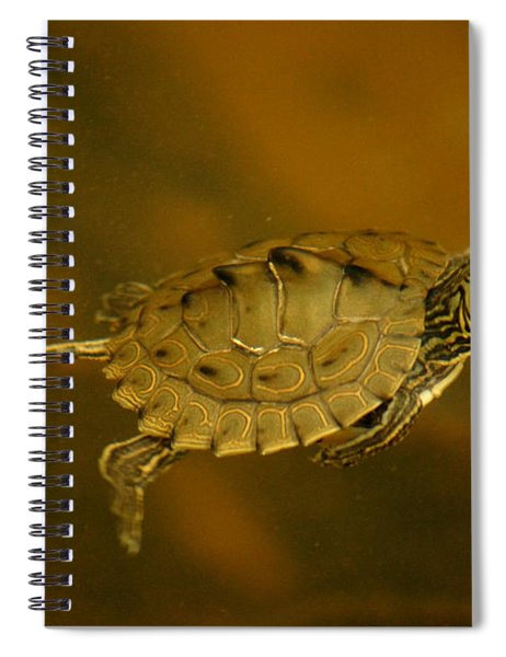 The Southeastern Map Turtle Spiral Notebook