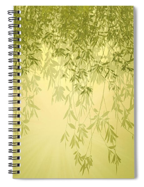 The Trees First Light Spiral Notebook