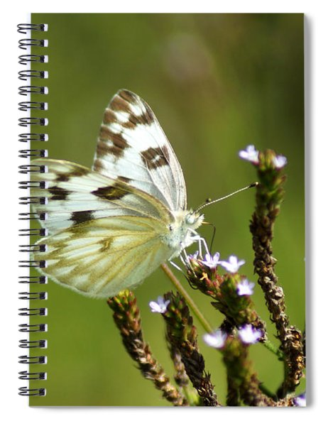 The Western White Spiral Notebook
