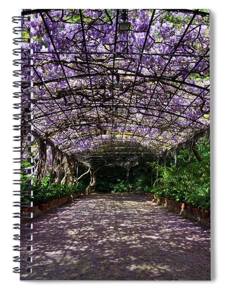 The Wisteria Arbour In Full Bloom Spiral Notebook